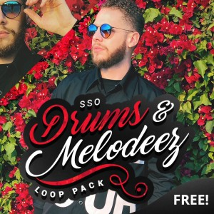 [FREE] SSO Drums & Melodeez Loop Pack